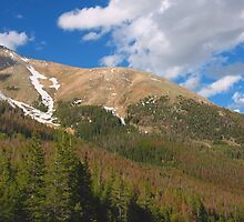 Colorado Rockies II by David Lamb