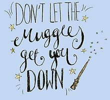 Don't let the muggles get you down! by lilliesandroses