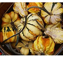 Gourds In A basket Photographic Print