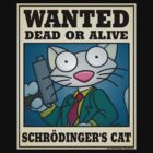 Schrodinger's Cat by Wislander