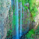 Queen Mary Falls by peasticks