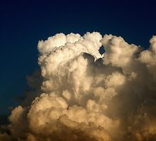 CUMULUS CLOUDS IN HIGH CONTRAST by Sandra  Aguirre