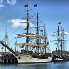 The Europa and Oosterschelde by Larry Lingard-Davis