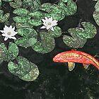 Koi Pond by welchko