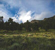 Rocky Mountain 1 by Clayton Lyon