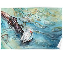 White Duck On Lake Constance In Winter Poster