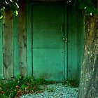 Green Door by Paraplu Photography