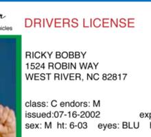 Ricky Bobby Sticker