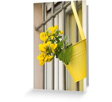 yellow flowers on the balcony Greeting Card