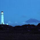 Cape Egmont New Zealand by M. van Oostrum
