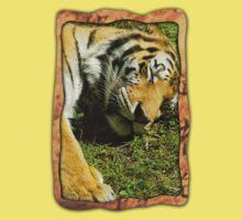 Sleeping Tiger Kids Clothes