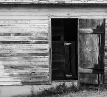 Open Barn Door by Tom Gotzy