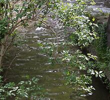 river in spring by spetenfia