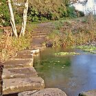 Stepping Stones by philipclarke