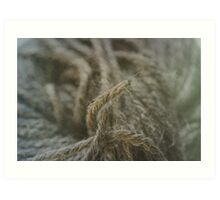 Wool Art Print
