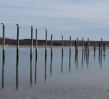 Gull Poles by Gilda Axelrod