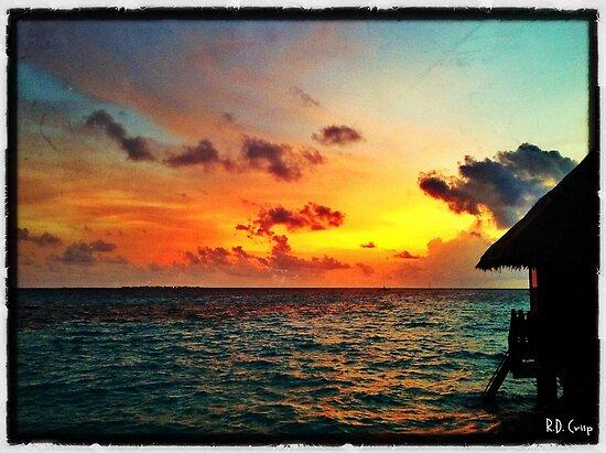 Honeymoon Paradise by Ryan Davison Crisp