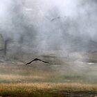 Crows in the Steam by Eileen McVey