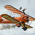 Breitling Wingwalker by PhilEAF92