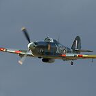 Hawker Hurricane by PhilEAF92