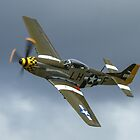 P51D Mustang by PhilEAF92