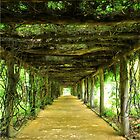 Covered Walkway by Charlotte Hertler