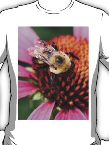 Not The Bees!!! T-Shirt