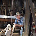 Just Cutting ,saw mill Tasmania by Tom McDonnell