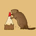 The Beaver And The Color by crabro