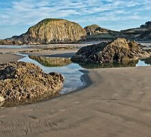 Seal Rock Beach by thomr