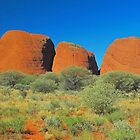 The Olgas Profile by peasticks