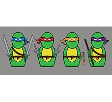 Teenage Mutant Ninja Turtles (without quote) Photographic Print