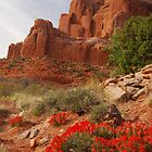 Paintbrush in Arches by Eivor Kuchta