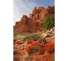 Paintbrush in Arches Photographic Print