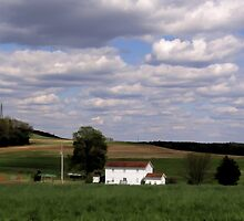 White house in a green field by vigor