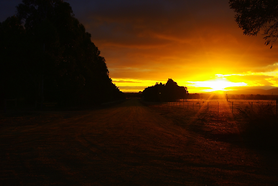 Country Sunrise by Kerry  Hill