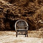 Sandburg's Chair by Roger Jewell