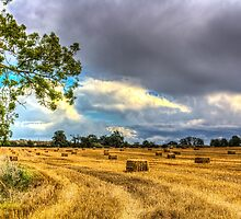 Storm approacing by DavidHornchurch