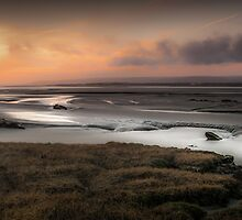 Penclawdd marsh sunset Wales by leightoncollins