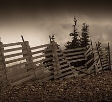 Old fence on Mt Washington by leightoncollins