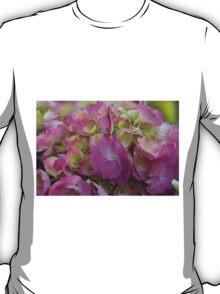 hydrangea bloom T-Shirt