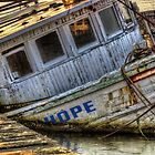 Hope DOESN'T Float by Kyle Wilson