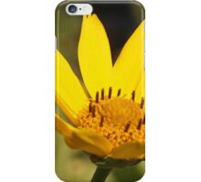 Sunshine on a Cloudy Day iPhone Case/Skin