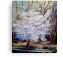 FUMC Cherry Trees, oil on canvas Canvas Print