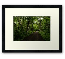 Summer Forest Tranquility - Beautiful Charlevoix, Quebec, Canada Framed Print