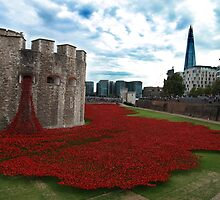The Poppies - Tower of London by PoppyCarter