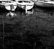 Black and White Boats by PatiDesigns