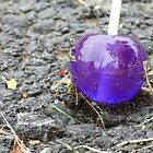Purple Lollipop Ant Food by artbybutterfly