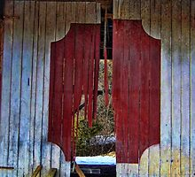 Broken Barn Door by James Brotherton