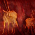 Moods Of Africa - Gazelles  by Carol  Cavalaris